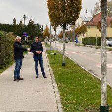 Neue Bushaltestelle in der Guntramsdorfer Straße